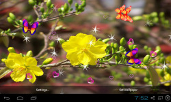 3D Apricot Blossom Live Wallpaper screenshot 4/5