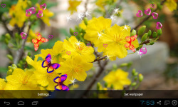 3D Apricot Blossom Live Wallpaper screenshot 5/5