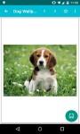 Dog Wallpapers Android 3x screenshot 2/6