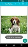 Dog Wallpapers Android 3x screenshot 3/6