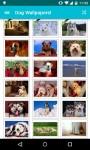 Dog Wallpapers Android 3x screenshot 5/6