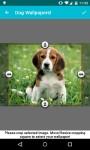 Dog Wallpapers Android 3x screenshot 6/6