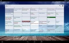 Business Calendar Pro maximum screenshot 6/6