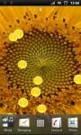 Beautiful Sunflower Live Wallpaper screenshot 2/3