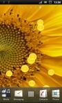 Beautiful Sunflower Live Wallpaper screenshot 3/3
