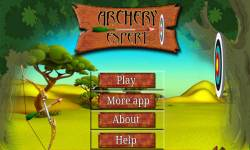 Archery Expert screenshot 1/4