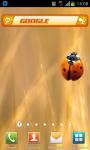 Search Widget Orange screenshot 2/4