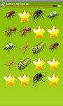Bugs Match up Game screenshot 3/4