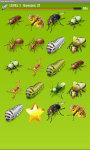 Bugs Match up Game screenshot 4/4