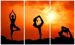 yoga yoga screenshot 3/6