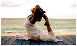 yoga yoga screenshot 5/6