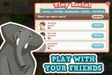 Tiny Zoo Friends screenshot 4/4