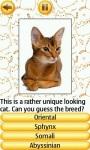 Cat Breeds Quiz screenshot 4/4