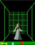 SDN_Labyrinth screenshot 1/1
