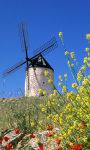 Windmills Wallpapers app screenshot 1/3