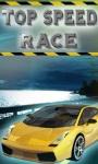 Top Speed Race screenshot 1/1