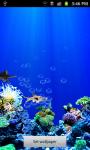 Under water Fish Live Wallpaper screenshot 2/5