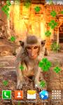 Monkey Live Wallpapers screenshot 4/6