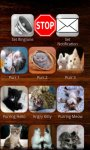 Cats and Dogs Ringtones Free screenshot 1/3