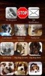 Cats and Dogs Ringtones Free screenshot 2/3