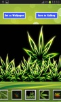Best Weed HD Wallpapers screenshot 4/6
