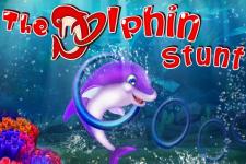 The Dolphin Stunt screenshot 1/5