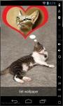 Cat Dreams Live Wallpaper screenshot 1/2