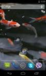 Koi Video HD Live Wallpaper screenshot 2/4