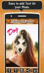 Animal Faces Photo  screenshot 4/6