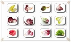 Chicory Flowers Onet Classic Game screenshot 3/3