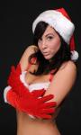 Santas Sexy Helpers Deluxe screenshot 1/3