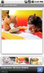 Cute Hamster screenshot 2/3