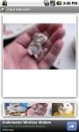 Cute Hamster screenshot 3/3