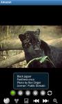 Zoo : Amazon Wild Animals screenshot 1/6
