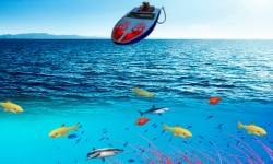 Sport Fishing screenshot 1/3