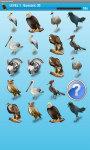 Dangerous Birds Game Free screenshot 4/4