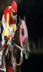 Horse Run screenshot 3/5