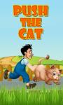 PUSH THE CAT screenshot 1/1