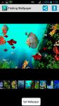 Fishing HD Wallpaper screenshot 1/4