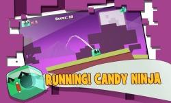 Candy Ninja Tour screenshot 4/4