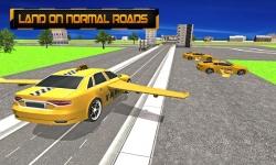 Flying Taxi: Real Pilot 3D screenshot 3/5