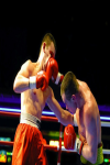Play Boxing screenshot 2/4