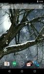 Winter LWP screenshot 3/4