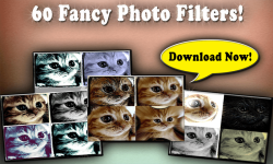 Free Collage Maker To Help Your Photos Stand Out screenshot 2/3