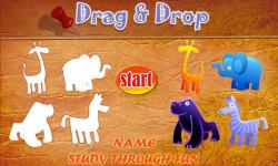 Drag And Drop - Name Study screenshot 1/4