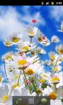 Daisy Flower Field Live Wallpaper screenshot 2/5