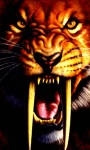 Tiger Tooth Live Wallpaper screenshot 3/3