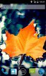 Autumn Leaf Live Wallpapers screenshot 1/4