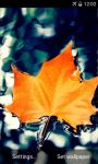Autumn Leaf Live Wallpapers screenshot 3/4