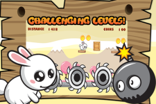 Bunny Adventure Run screenshot 1/3